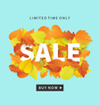 autumn sale fashionable banner template vector image vector image