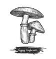 gypsy mushroom sketch forest or wood shroom vector image