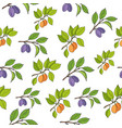 plum and apricot seamless pattern vector image vector image
