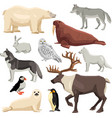 Polar Animals Set vector image vector image