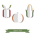 Set of paper vegetables vector image