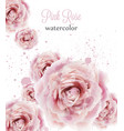 watercolor pink roses isolated beautiful vector image