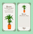vintage label with yucca plant vector image