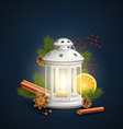 Christmas Lantern with Spices on Dark Blue vector image