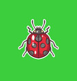 ladybug in vector image vector image