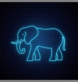 neon elephant sign outline elephant icon vector image vector image