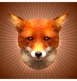 Polygonal Fox vector image