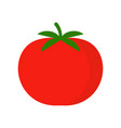 ripe tomato icon isolated vegetables on white vector image vector image