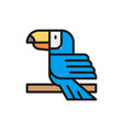 toucan tropical bird flat color line icon vector image