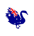 black swan silhouette with the flag of australia vector image