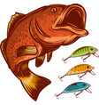 fish fishing logo and lures isolated on white vector image