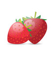 fresh juicy strawberry icon tasty ripe fruit vector image