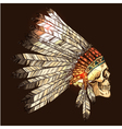 Indian Tribal Headdress With Skull vector image vector image