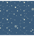 seamless pattern with the stars constellations vector image