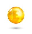 Vitamin E glitter gold icon vector image vector image