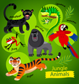 wild Jungle animals vector image vector image