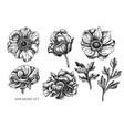 collection hand drawn black and white vector image vector image