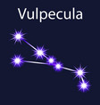 constellation vulpecula with stars in the night vector image vector image