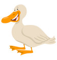 cute duck animal character vector image vector image