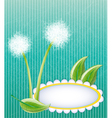 Green layout with dandelions vector image