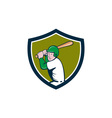 American Baseball Player Batting Crest Cartoon vector image vector image