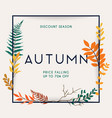 discount season sale autumn leafs on the vector image vector image