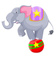 Gray elephant balancing on the ball vector image