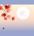 red maple foliage on sunrise sky background vector image