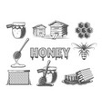 set elements honey vector image