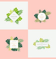 set of monstera tropical leaves fashion signs or vector image