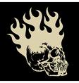 Skull 003 vector image