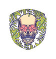 skull with tropical border vector image vector image