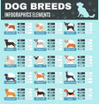 breed dogs infographics vector image vector image