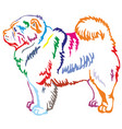 colorful decorative standing portrait of chow chow vector image vector image