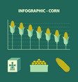infographic declining production of corn vector image
