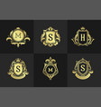 luxury ornaments logos and monograms crest design vector image