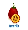 Tamarillo fruit icon emblem vector image vector image