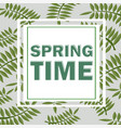 tropical design with palm leaves spring time vector image