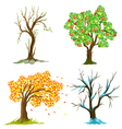 seasons of tree vector image