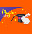 banner with funny white rabbit magic hat vector image