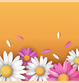 floral summer background with colorful daisy vector image vector image