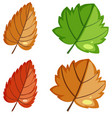 large set nature with flowers and leaves vector image vector image