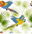macaw parrots and palm leaves vector image vector image