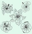 Set of Hawaii hibiscus flower leaf vector image vector image