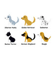 set of puppy dog in flat style side view vector image
