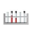 Test glass tubes in rack equipment for biology