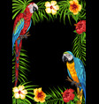 tropical frame with parrots vector image vector image