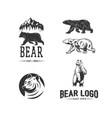 bears logos logotypes vector image