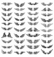 big set wings on white background design vector image vector image