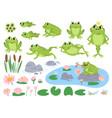 cartoon frogs green cute frog egg masses vector image
